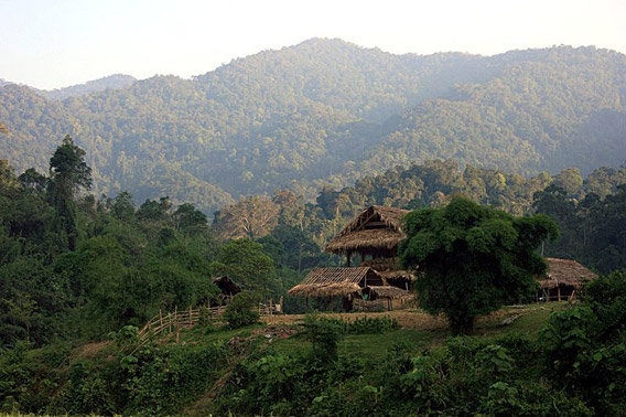 Pu Mat National Park in the Annamite Range in Vietnam. Photo by: Rolf Müller.