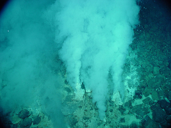 Hydrothermal vent in the  Marianas Trench. Life on hydrothermal vents were not discovered until the late 1970s. Decades later, much remains unknown about these vents and many of them remain unexplored. Photo by: NOAA.