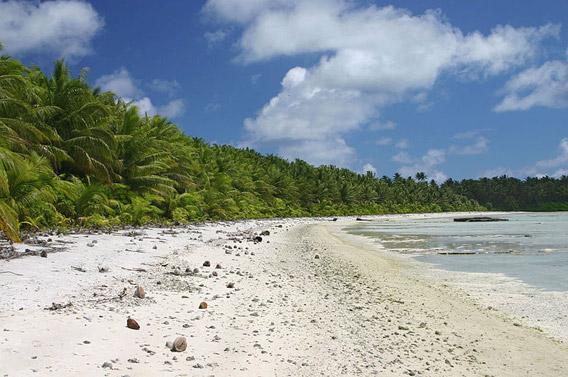 Beach on Palmyra Atoll.