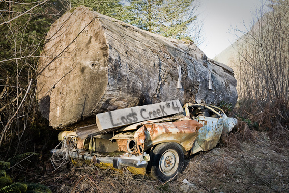 Watt says: 'A clear warning sign to travel with caution while on logging roads in BC!'