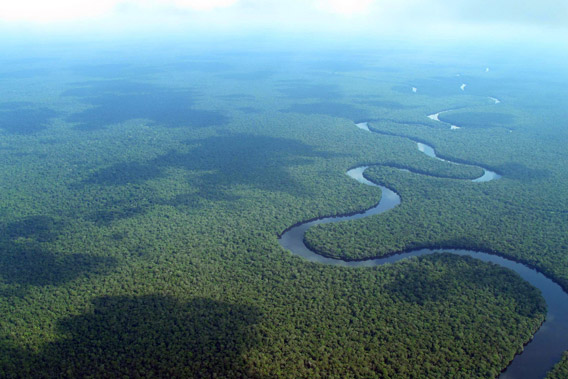 Aerial view of Congo Basin rainforest in Equateur Province, DR Congo. Photo courtesy of: Ingrid Schulze.