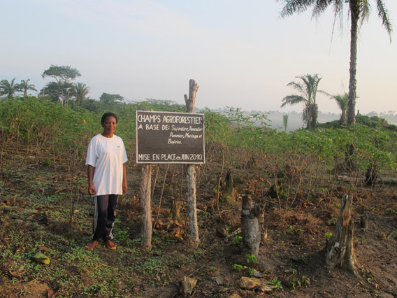 Agroforestry project. Photo courtesy of: Ingrid Schulze.