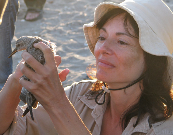 Patricia Gonzalez with a rufus red knot. Photo by: Guy Morrison.