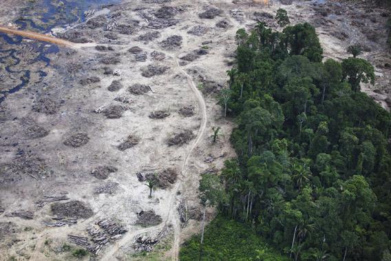 Belo Monte dam.