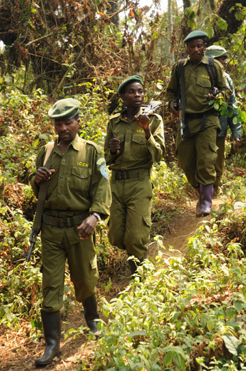 Guards on patrol in Kahuzi-Biéga National Park in the DRC. Photo by: A. Plumptre/Wildlife Conservation Society.