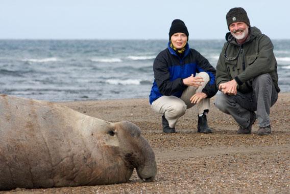 Campagna con Isabella Rossellini, creadora de Green Porno, y un elefante marino. Foto por: Jody Shapiro.