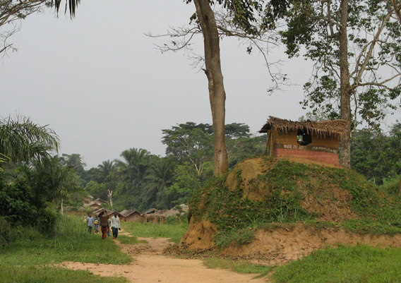 Village in the Kokolopori Bonobo Reserve. Shelter on right houses a talking drum, still used for long distance communication. Photo courtesy of: Ingrid Schulze.