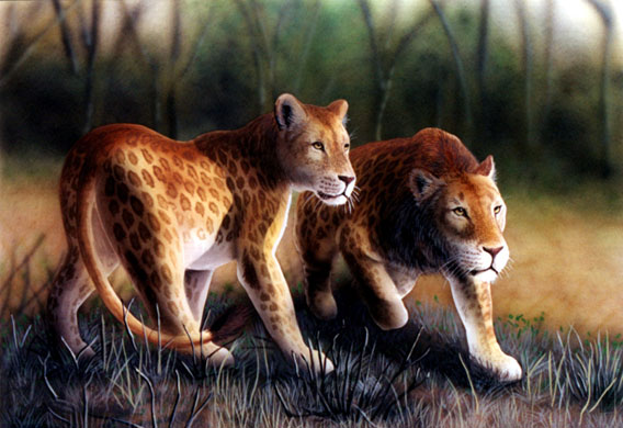 Keyan spotted lions are a 'cryptid' species with unconfirmed sightings in Africa. Illustration by William Rebsamen.