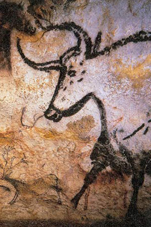 Auroch painted on the cave walls of Lascaux. Photo by: Prof Saxx.