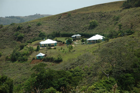 The Nigerian Montane Forest Project's field station set in the Ngel Nyaki Forest. Photo courtesy of: Hazel Chapman.