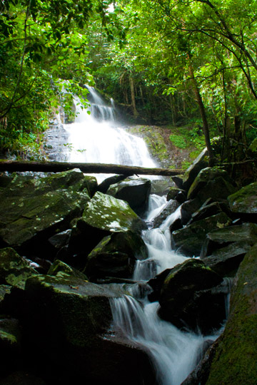 Sahaindrana waterfalls in Betampona Forest Reserve. Photo by: Gonçalo M. Rosa.