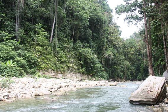 The Sakartemen River. Photo by: Kristine Greke.