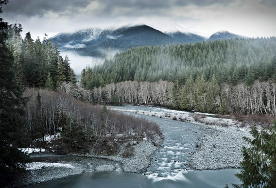 Watt says: 'A cool, wintery view of the Gordon River Valley. An area home to cougars, wolves, bear, elk, salmon, giant trees, and more.'