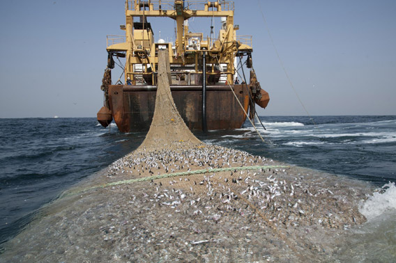 The Afrika Super Trawler. Photo by: Pierre Gleizes/Greenpeace.
