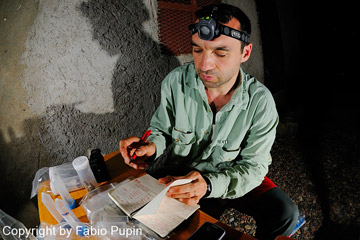 Team researcher recording data and specimens. Photo by: Fabio Pupin.