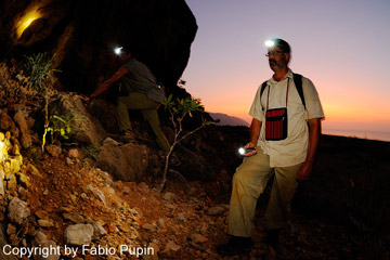 Field survey at night searching for nocturnal reptiles. Photo by: Fabio Pupin.
