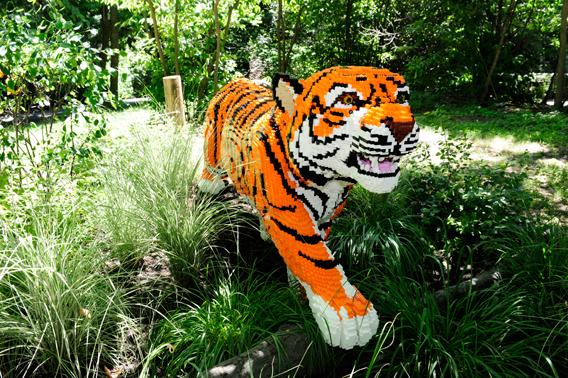 LEGO tiger. Photo by: Julie Larsen Maher.