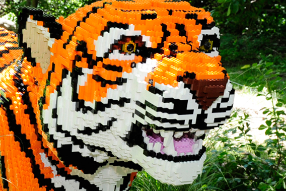 Close-up of LEGO tiger. Photo by: Julie Larsen Maher.