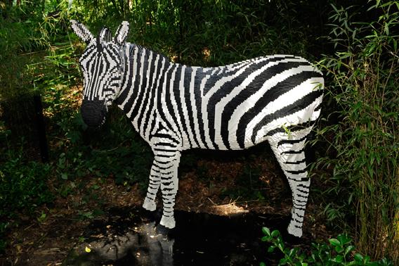 LEGO zebra. Photo by: Julie Larsen Maher.