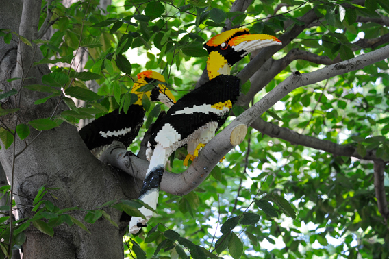LEGO hornbills. Photo by: Julie Larsen Maher.