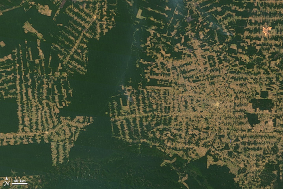 Top image shows deforestation in Brazil's western state of Rondônia in 2000. Bottom image shows deforestation as of 2010. Images courtesy of NASA ..
