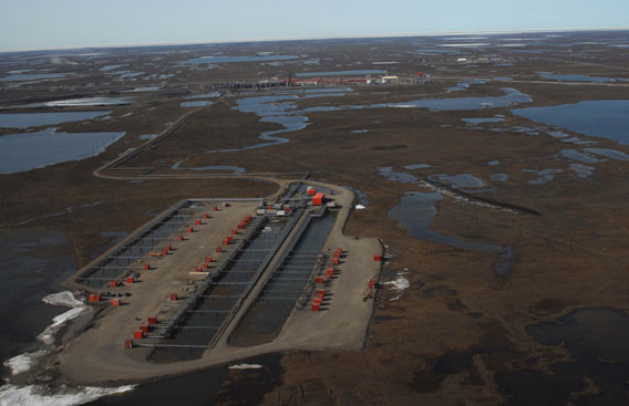 Oil fields of Prudhoe Bay.  Photo credit: Steve Zack/WCS.