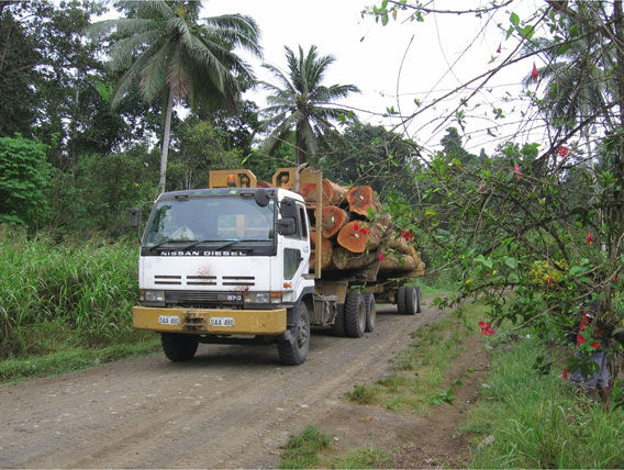 Timber truck in New Guinean forest. Photo: M. Hudson.