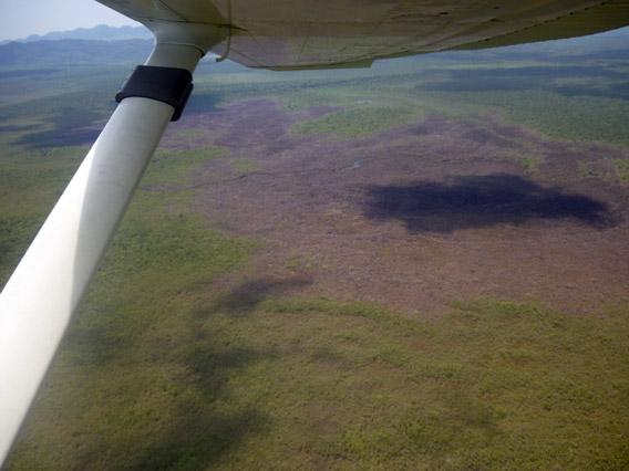 Aerial view of burned bog. Photo by: SATIIM.