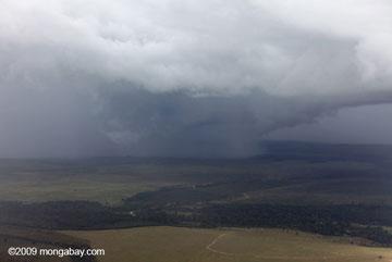 Rainstorm over the Amazon. Photo by: Rhett A. Butler.
