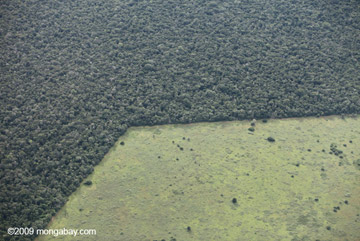 Patterns of deforestation in Brazil. Scientists see selective logging as a far better alternative than conversion to cattle pasture or monocultures. Photo by: Rhett A. Butler.