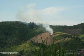 Les combustion de champs et forêts à fins agricoles, appelées « brûlis », (ici en Colombie) produisent du carbone noir de façon considérable, ce qui perturbe les précipitations, pose des risques pour la santé, et réchauffe la planète. Crédit photo : Rhett A. Butler.