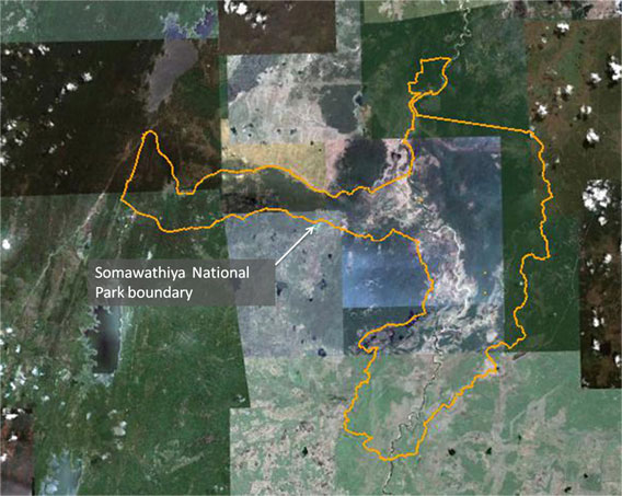 Somawathiya National Park outline via Google Earth. Photo courtesy of Environmental Foundation Limited.