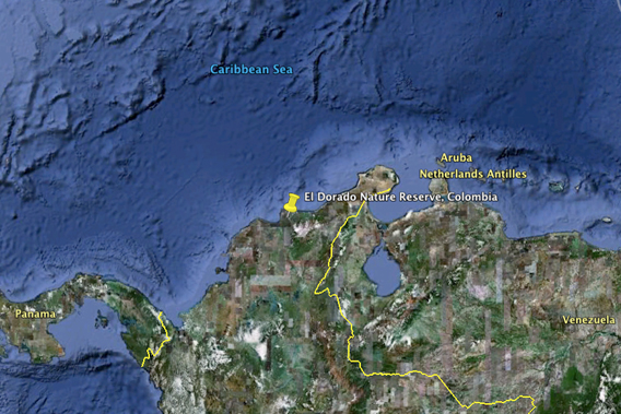 El Dorado Nature Reserve is located in northern Colombia overlooking the Caribbean Sea. Image courtesy of Google Earth.