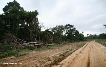 Logging road in Gabon. Photo by: Rhett A. Butler.