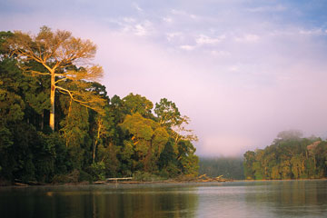 Early morning on Cocha Salvador, Manu National Park. Photo by: Frank Hajek.