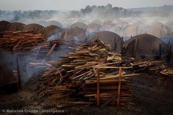 Illegal charcoal kilns in the municipality of Tucuruí. Photo by: Marizilda Cruppe/Greenpeace.