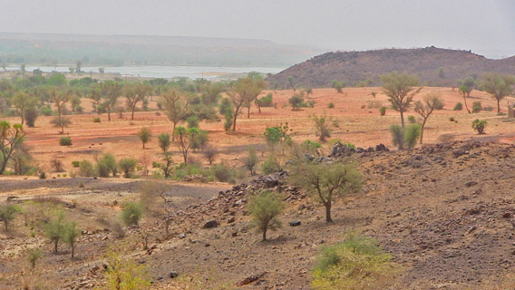 Contrary to conception, the Sahara Desert's most common feature is really the Hamada, or stone plateaus and gravel plains, which cover over three quarters of its surface, and harbors at great distance the barely visible silhouette of the once-majestic Niger River. Photo by: Linda Leila Diatta.