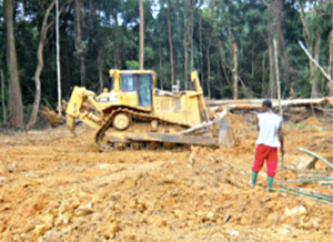 Land clearing by Herakles in June 2011 in Fabe village near Korup National Parlk. Photographer asked to remain anonymous.