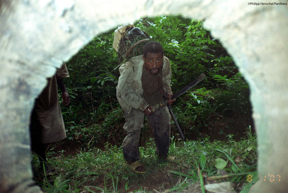 Camera trap hidden in log takes photo of bushmeat hunter. Photo by: Philipp Henschel/Panthera.