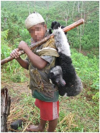 Un jeune à Madagascar avec un indri mort. Photo ©