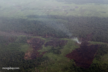 Aerial view of burning peatlands and forest in Indonesian Borneo. Photo by: Rhett A. Butler.
