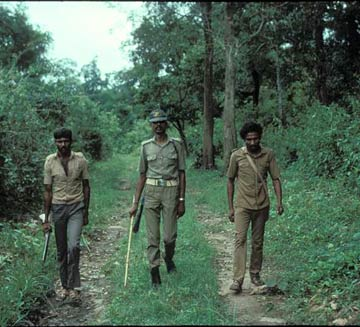 Field monitoring by forest dept. staff. Copyright:CWS/WCS-India.