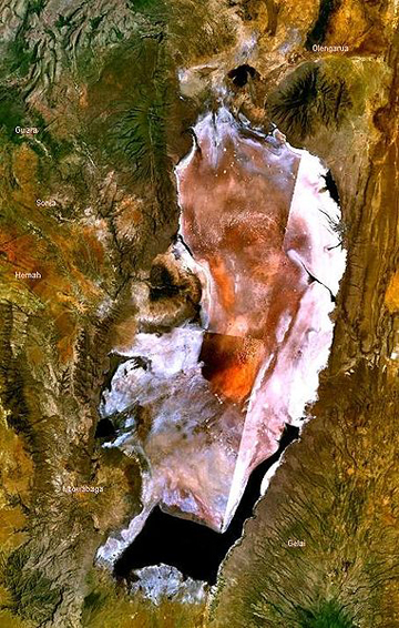 Lake Natron as viewed from satellites. Image by: NASA.