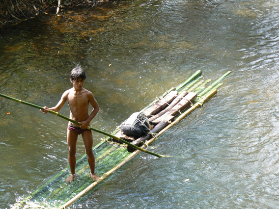 Logger on the O-Pong River. Illegal logging is often done by locals for pittance, while those organizing the trade take the bulk of the money. Photo by: Greg McCann.