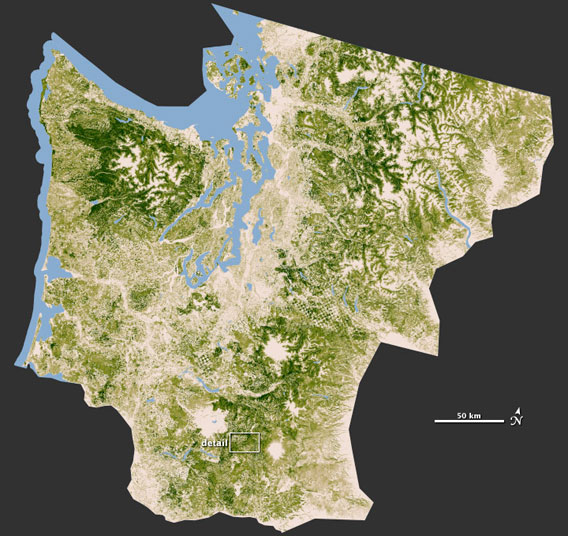 NASA map shows forest cover in Washington and parts of Oregon. Photo by: NASA.