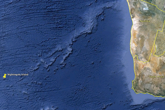 Nightingale Island's location in the Southern Atlantic fr off the southwest coast of Africa.