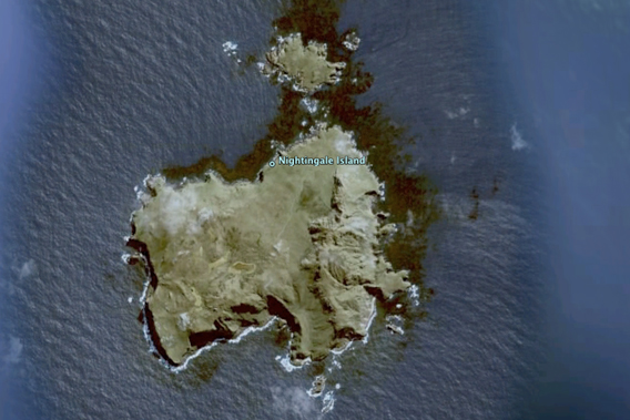 Nightingale Island as viewed from Google Earth.