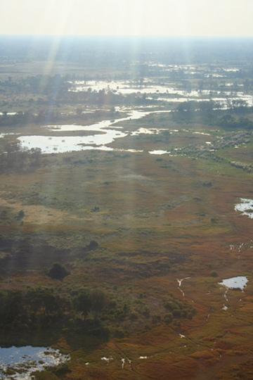 Aerial view of the Okavango Delta. Photo by: Tiffany Roufs.