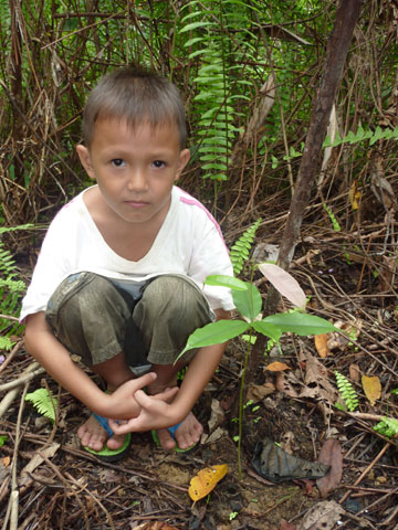 Penan child next to 3-week-old Kapor species. Photo courtesy of: Gavin Bate.