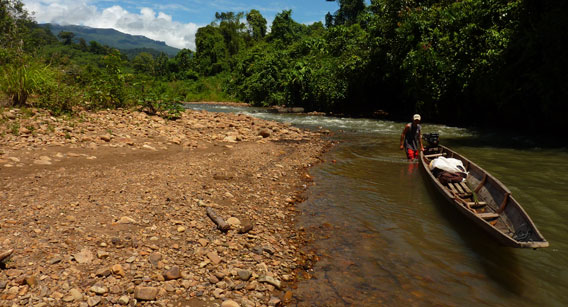Traveling on the Kerong River with the Penan. Photo courtesy of Gavin Bate.